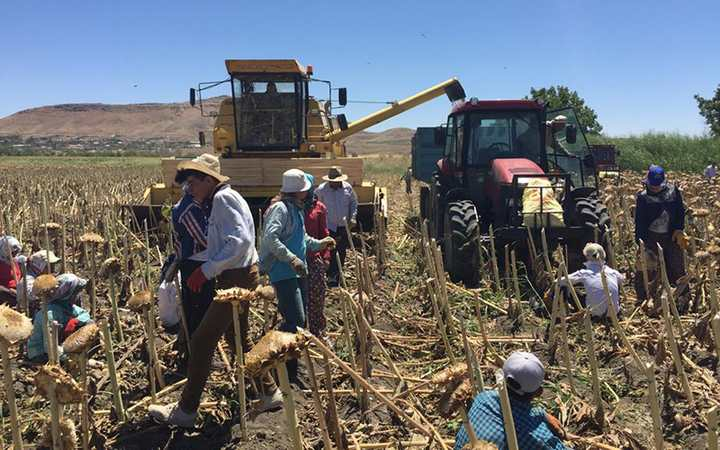 Çiftçiye Sürdürülebilir Üretim Desteği