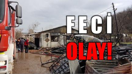 Feci Olay!