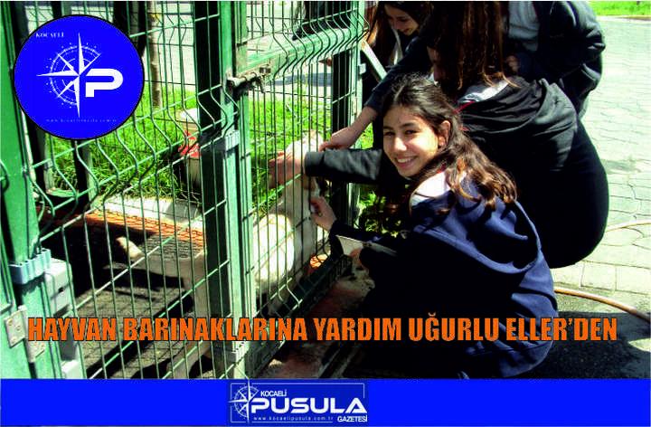 Hayvan barınaklarına yardım Uğurlu Eller'den