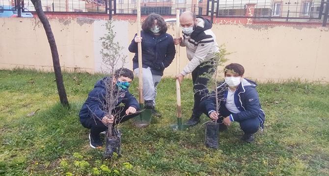 """""""Önem """" Projesi kapsamında öğrenciler ağaç dikti"""