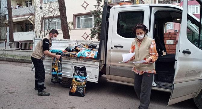 Sokak hayvanları için  1,5 ton mama dağıttı