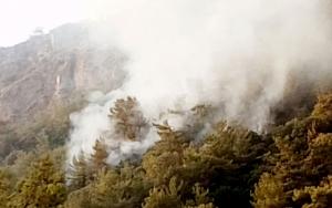 Marmaris'te 11 bin hektar orman kül oldu!