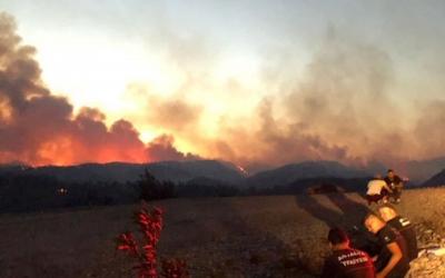 63 orman yangınından 43'ü kontrol altında