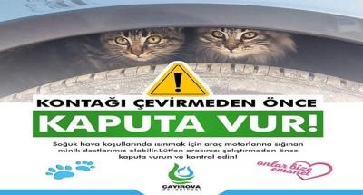 Çayırova belediyesi uyardı;Lütfen dikkatli olalım!