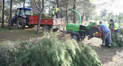 Çayırova'da mevsimlik budama çalışması