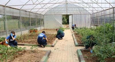 Cemil Meriç'te tarımsal rehabilitasyon
