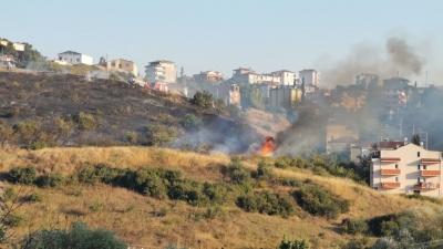 Darıca'da makilik alanda yangın!