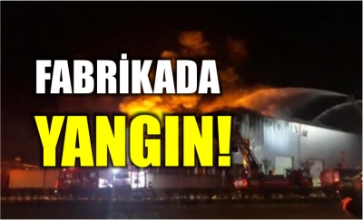 Fabrikada Yangın!