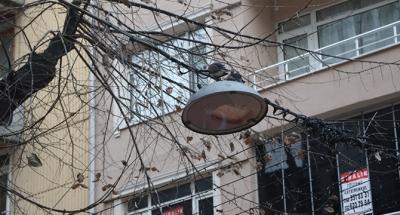 Fethiye Caddesi'ndeki ağaçlar budanacak