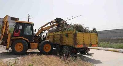 Körfez'de 248 ton bitkisel atık gübreye dönüştürüldü