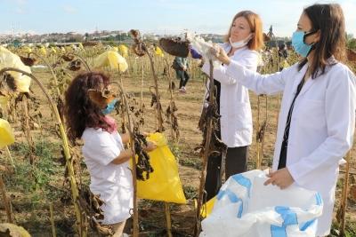 Sürdürülebilir tarım uygulamalarında ilk hasat yapıldı