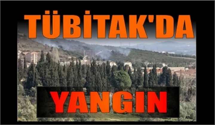 Tübitak'da Yangın